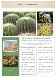Doc plantes succulentes