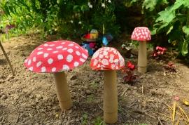 champignons magiques d'Alice